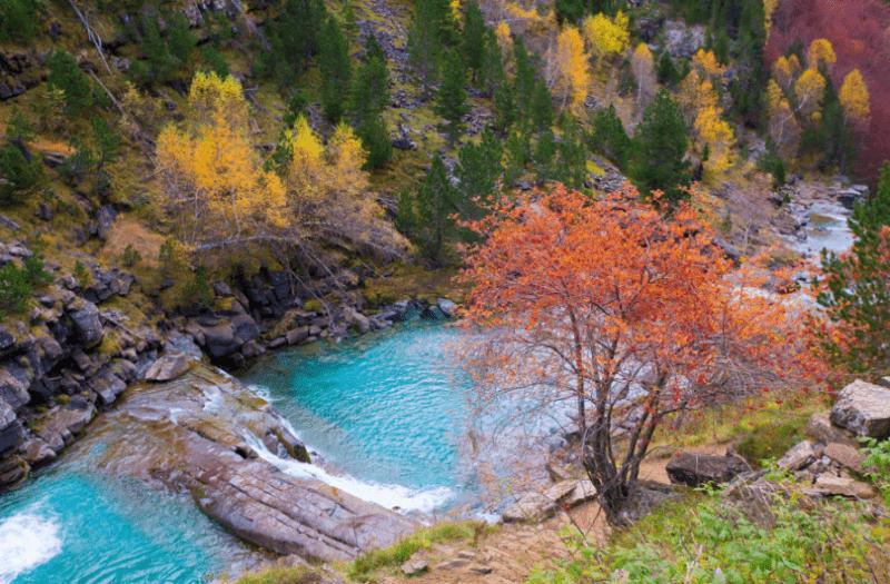 Parques naturales nacionales de España
