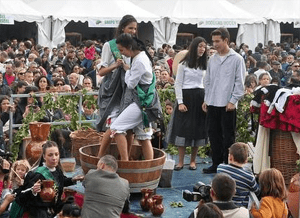Fiestas de otoño Fiesta de la Vendimia de Rueda