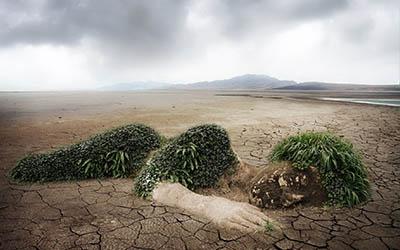 Cómo parar el calentamiento global