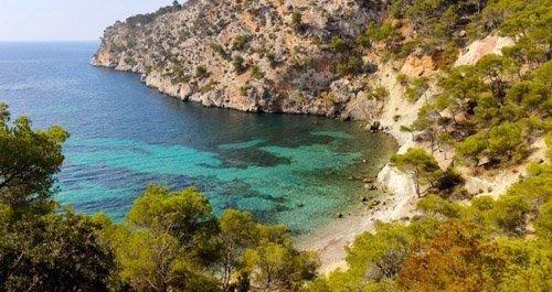 Playas para perros Mallorca