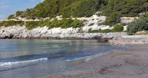 Playas para perros Barcelona