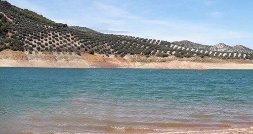 Playas para perros Córdoba