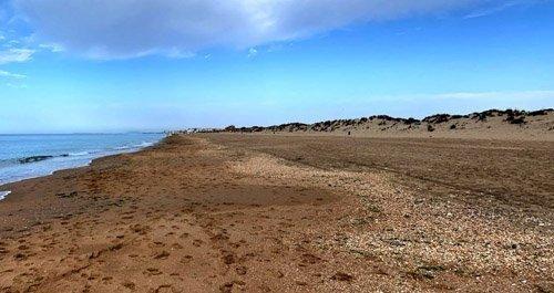 Playa para perros Huelva
