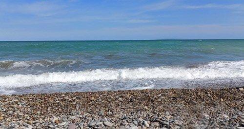 Playa para perros Castellon