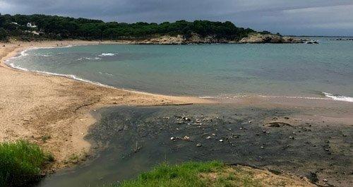 Playas para perros Girona