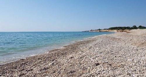 Playas para perros Tarragona