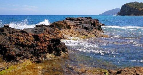 Playas para perros Ibiza