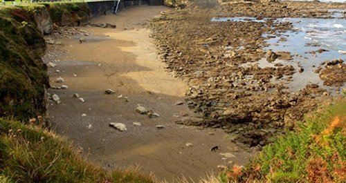 Playa de perros Gijón