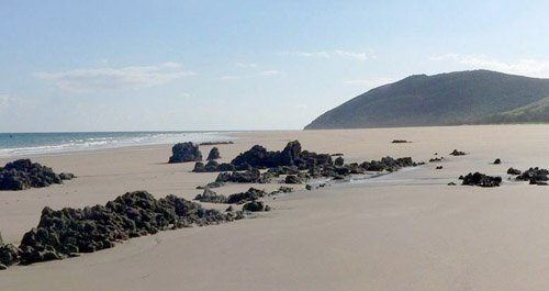 Playa de Helgueras canina