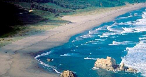 Playas para perros Castrillón