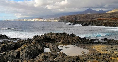 Playas para perros Tenerife