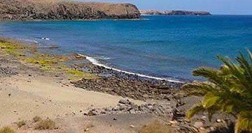 playa canina Lanzarote
