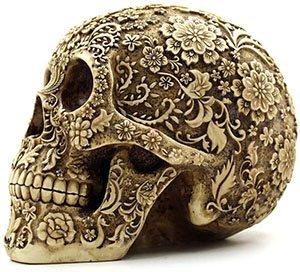Cráneo Humano Halloween